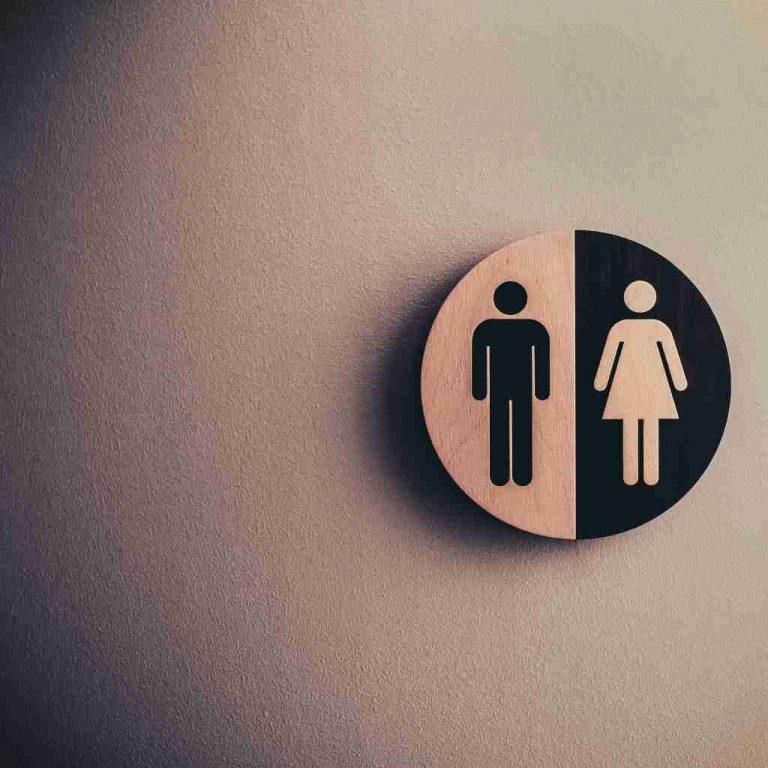 toilet plumbing companies